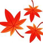 秋タームがスタート!