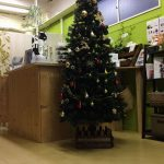 いよいよクリスマスシーズン到来!