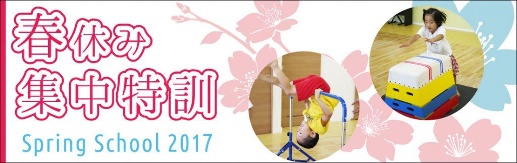 spring_school_2017